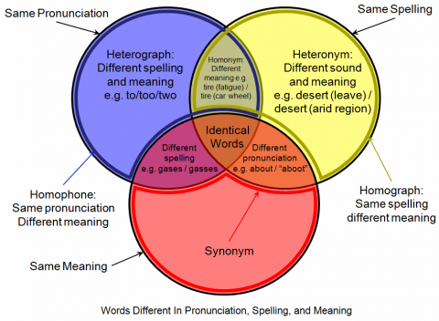 homophones diagram AshTutors.co.uk